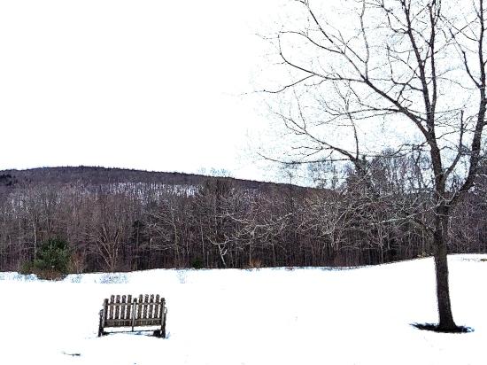 Snowy+Landscape